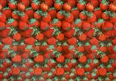 Stéréogramme fraises rouges
