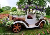 Plantation florale originale