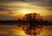 Calme et reflets