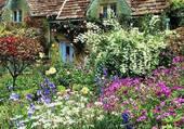 La ptite maison dans le jardin.