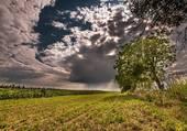 Puzzle L'orage gronde