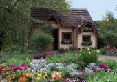 Mon beau jardin !