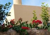 Cheminée dans Kythira Grèce