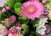 Très jolie fleurs