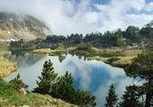 Lac et Sapins