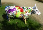 Vache multicolore