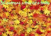 Puzzle les feuilles d'automne