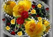 Jolies roses jaunes