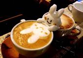 Lapin, café crème
