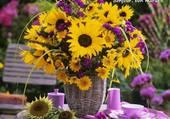 Un bouquet de soleil