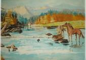 peinture sur les chevaux