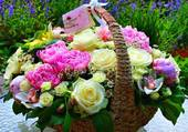 Belle corbeille de fleurs