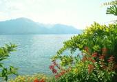 Puzzle Lac du léman - Montreux
