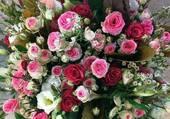 Magnifique brassée de roses