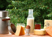 Lait & Fromages