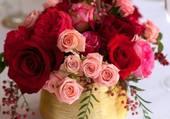 Joli pot de roses