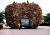 Transport en asie.5
