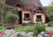 Partie de jardin fleurie