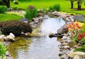 ruisseau dans un jardin