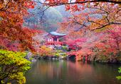 parc à Kyoto au Japon