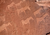 Gravure rupestre