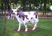 les vaches en déco