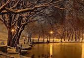 Neige au bord de l'étang