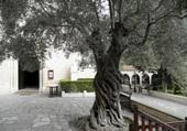 Monastère Néofytos