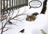gros titi guette les oiseaux