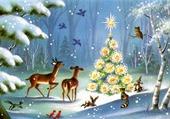 Noel en forêt