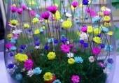 bouquet irréel