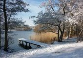 Puzzle Etang en hiver