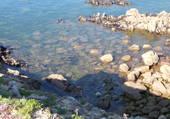 La mer au Croisic