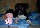 Norah à deux mois