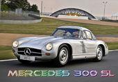 Mercedes 300SL Le Mans