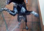 Norah prend sa douche