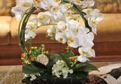 Panier avec orchidées