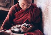 jeune moine et son chat en birmanie