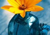 Vase bŀeu