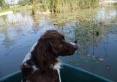 Velky dans la barque