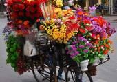Velo transporteur de fleurs