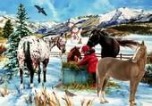 l'enfant avec ces chevaux