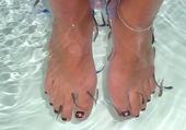 poissons et pieds de bri