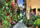 Petite rue tres fleurie
