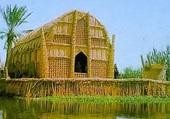mosquée des marais
