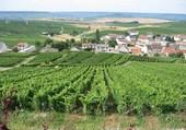 Village au coeur du vignoble champenois