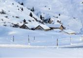 Puzzle un bel hiver blanc