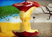visages et trognon de pomme