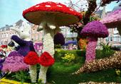 Puzzle Drôle de champignons