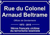 Colonel Beltrame